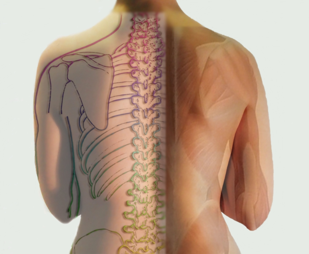 Structural osteopathy